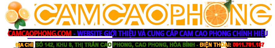 Giới thiệu và cung cấp sản phẩm Cam Cao Phong chính hiệu