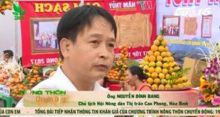 100% Cam Cao Phong tại Lễ hội được truy xuất nguồn gốc