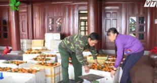 Hướng đi táo bạo ở vùng cam Cao Phong